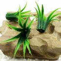 Plastic Small Grass, Plastic, Dark green, 4cm x 4.5cm, 10 pieces, [ST1230]